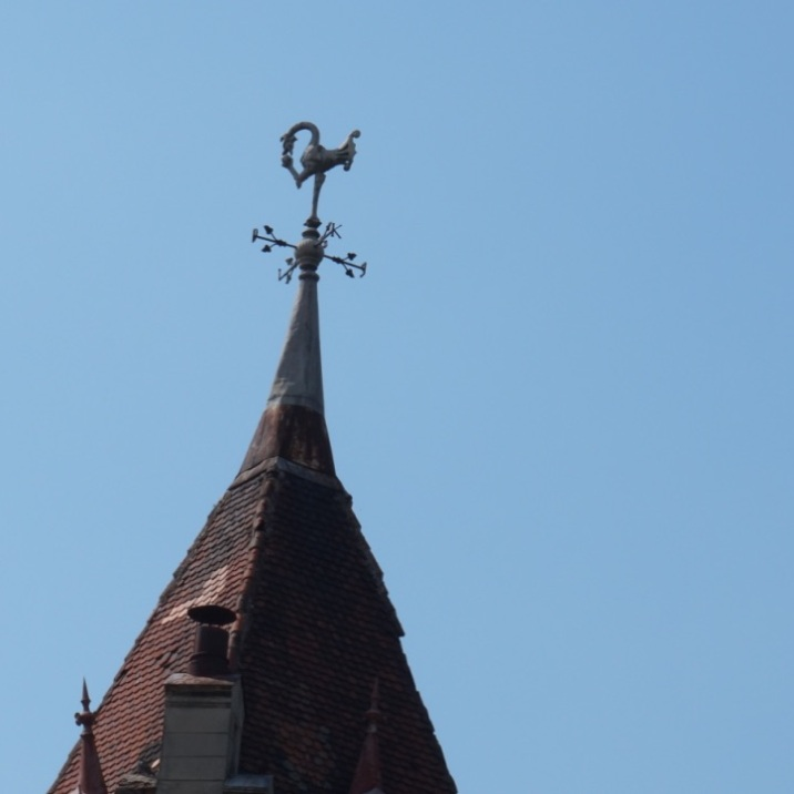 Compass rose and nice bird on top of one of Carei fortress towers