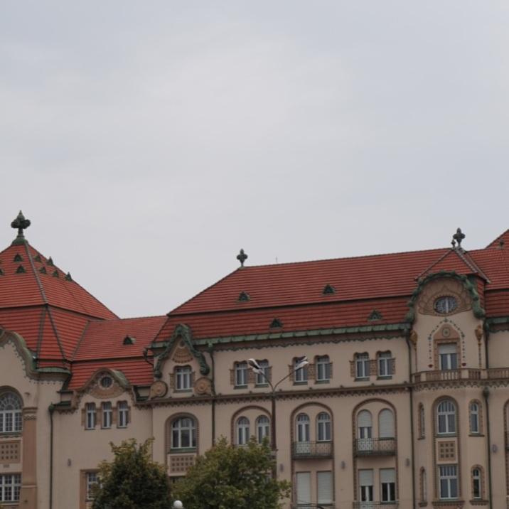 Art Nouveau roof ornaments, Oradea ( Black Eagle Palace, the street wing)