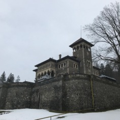 Cantacuzino Castle, Front Entrance