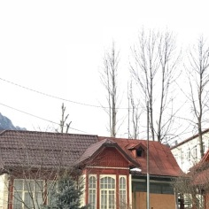 Combination of Balkan (colour scheme, windows) and Central European (roof, wood carving) Features