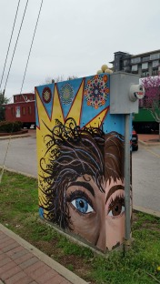 Painted Electrical Board Box, 4, Fayetteville, AR, USA