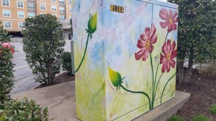 Painted Electrical Board Box, Fayetteville, AR, USA