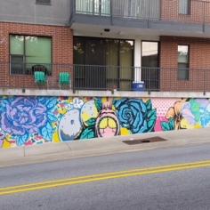 Mural by artist Tiger Sasha, Fayetteville, Arkansas