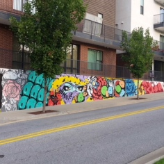 Mural by artist Tiger Sasha on The Academy at Frisco apartment buildings
