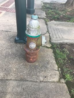 Hydrant spotted in Hot Springs, AR, US