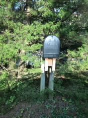 Mail_box_somehwere_in_Fayetteville,AR, US