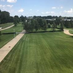 Clinton Presidential Park View