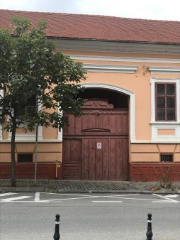Gate with geometrical and Baroque features