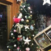 Christmas Tree in the window of a shop on Mureșenilor Street, Brașov
